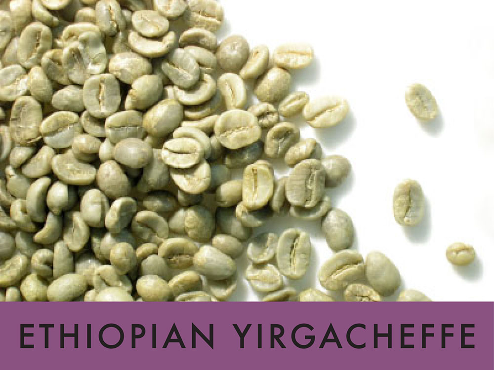 Picture FTO Ethiopian Yirgacheffe - 1 lb. Green Coffee Beans