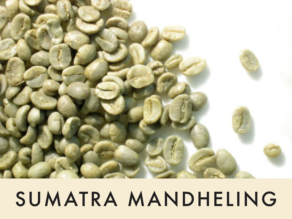 Picture FTO Sumatra - 1 lb. Green Coffee Beans