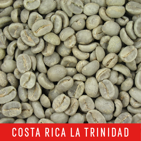 Picture Green Coffee Beans: Costa Rica La Trinidad - 1 LB