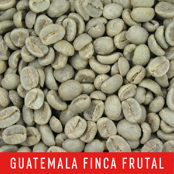 Picture Green Coffee Beans: Guatemala Finca Frutal - 1 LB