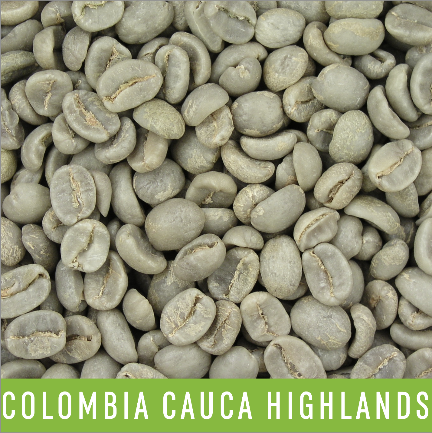 Picture Green Coffee Beans: Colombia Cauca Highlands - 1 LB